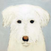 White Dog headshot